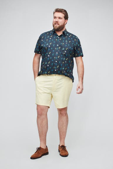 Stretch Washed Chino Shorts Extended Sizes